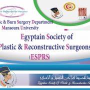 congresso chirurghi plastici ricostruttivi egitto